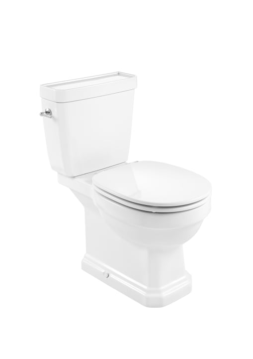 Vitreous china close-coupled Rimless WC with dual outlet