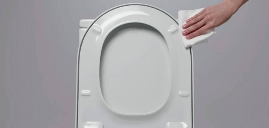 ASIENTOS Y TAPAS DE WC, LIMPIEZA DEL BAÑO
