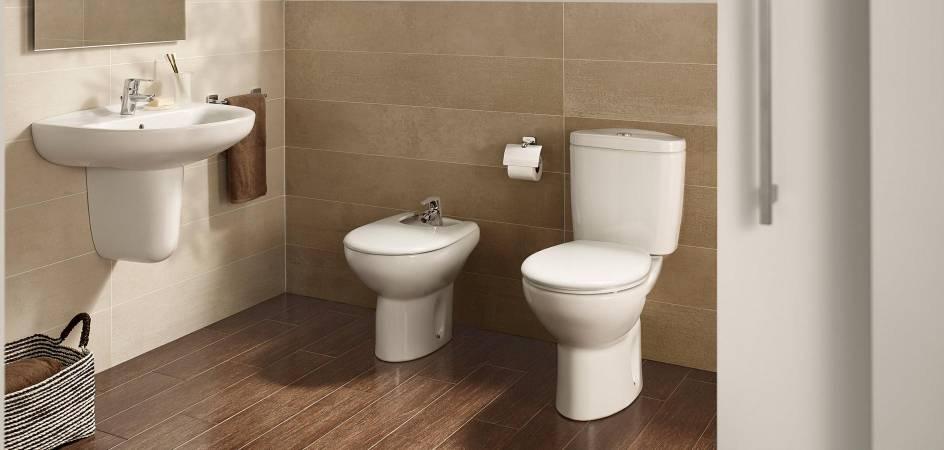Cambiar una tapa de WC Roca antiguo es muy sencillo